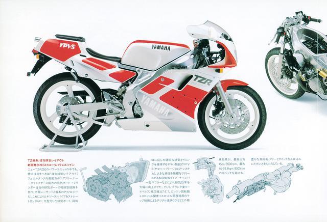 画像1: TZR250 (3MA) 1989年