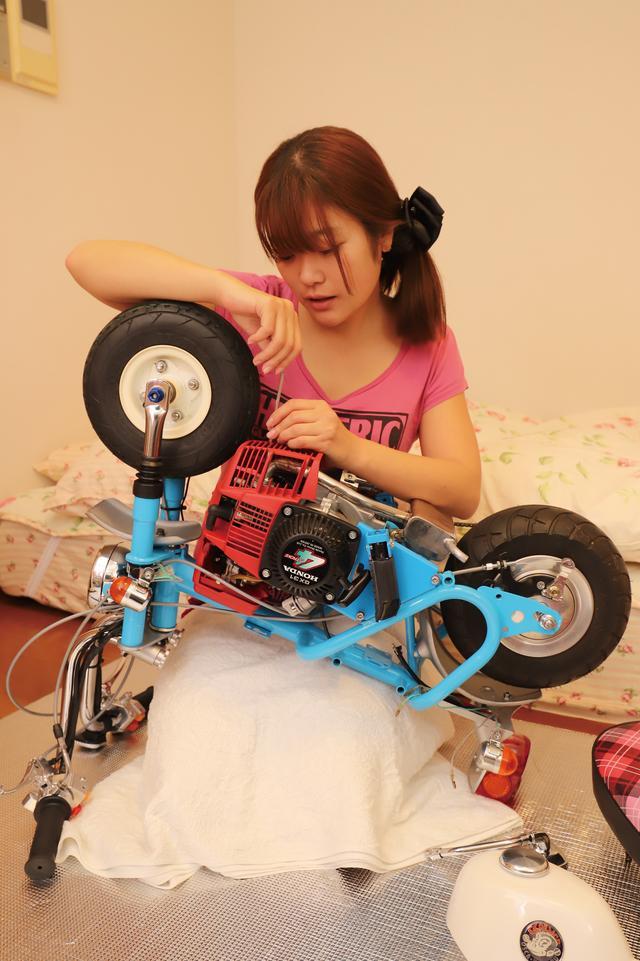 画像1: 世界最小のキットバイク仔猿完成!