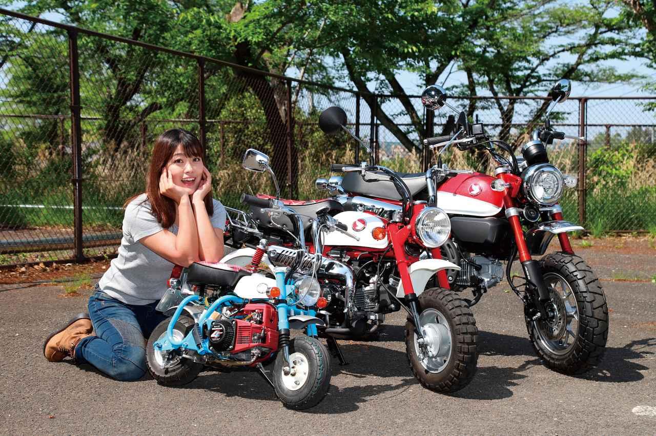 Images : 8番目の画像 - 「世界最小のキットバイク仔猿で走ろう‼ 試乗編「仔猿遊び・その3(全3回)」」のアルバム - webオートバイ