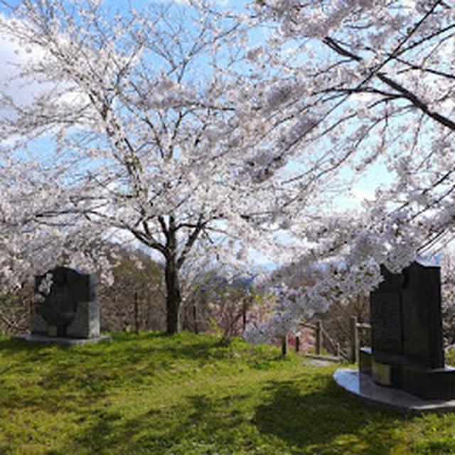 画像: 天童公園(舞鶴山)
