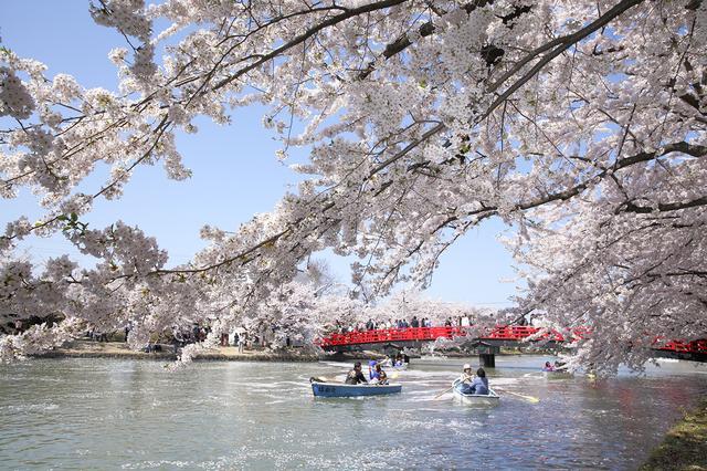 画像1: ⑥青森県弘前市/弘前公園