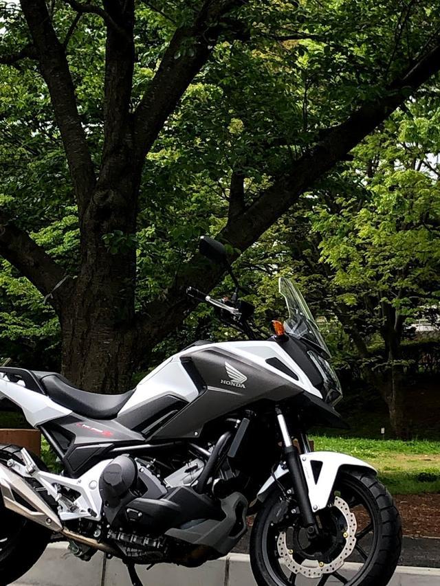 画像6: 「幼少よりバイクに親しみ国際A級ライセンス所得後、テクニカルスポーツ関東より全日本ロードレースの参戦していました。サーキットではSSばかりなので、普段はトレーニングでOFF、ツーリングではアドベンチャーモデル、通勤ではスクーターなど、いろんなオートバイに乗っています!」