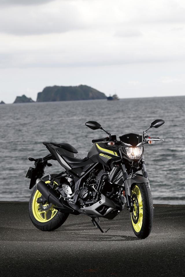 画像2: ヤマハ「MT-25」ってどんなバイク? フィーリングと持ち味を解説します! 足つき性&タンデムの乗り心地まで細かくチェック