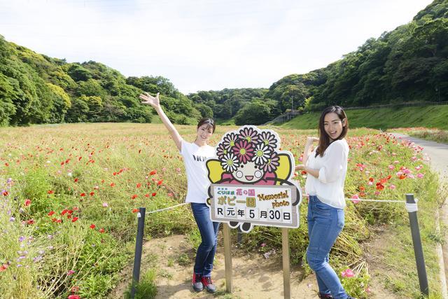 画像6: 第一目的地!横須賀・どぶ板通り!