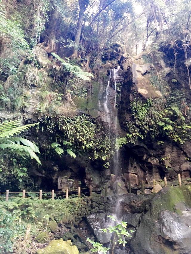 画像: 近くには、裏見ヶ滝があります。こちらも合わせて見ていただきたいです。