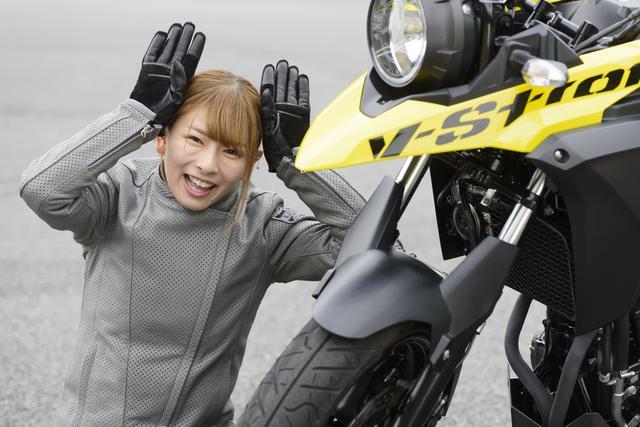 画像6: SUZUKI V-Strom 250/V-Strom 250 ABS 主なスペックと価格
