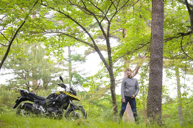 画像2: SUZUKI V-Strom 250/V-Strom 250 ABS 主なスペックと価格