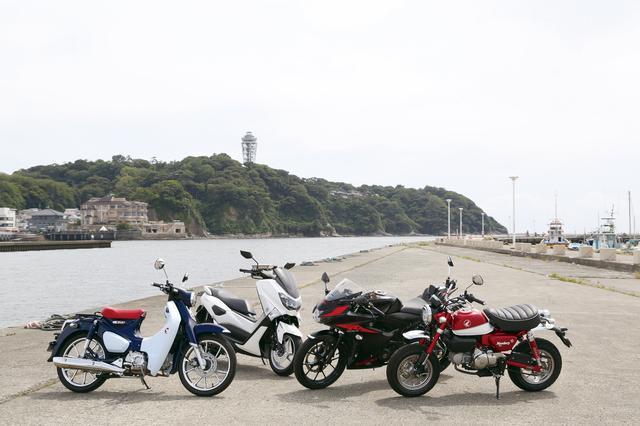 画像2: 東京→横浜の電車賃で東京→湘南を往復できます!