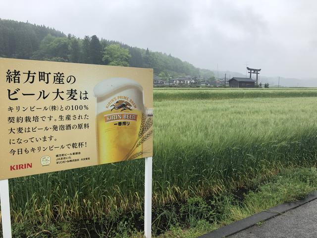 画像3: 原尻の滝(大分県豊後大野市)