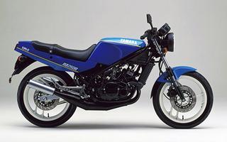1986 RZ250R/1XG