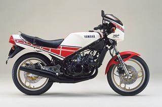 1983 RZ250R YSP/29L