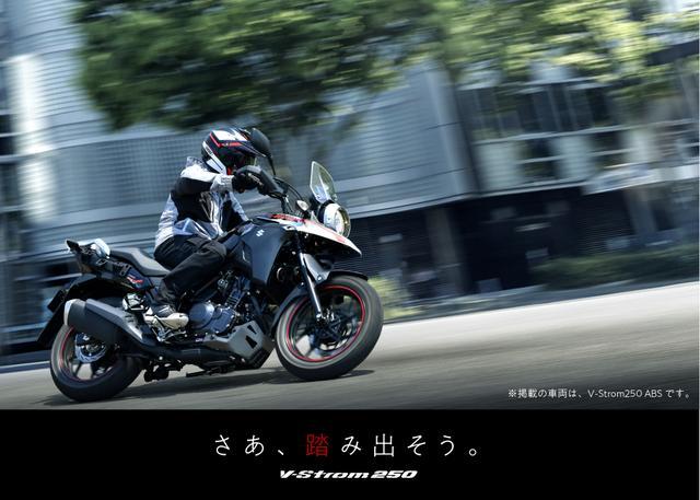 画像: スズキ国内二輪 Vストローム250 ABS / Vストローム250