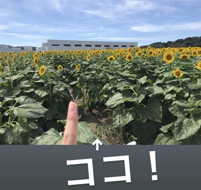 画像8: 有名なお花畑でまさかの⁈⁈