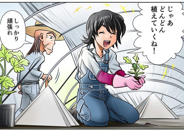 画像1: みのりちゃんのスイカ作りがいよいよ本格スタート!