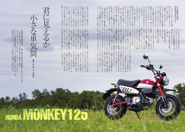 画像2: モデルが「ザ・クロマニヨンズ」の甲本ヒロトさん!!!!!!!