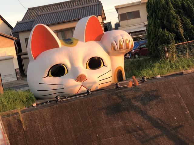 画像1: 最後は【見守り猫 とこにゃん】