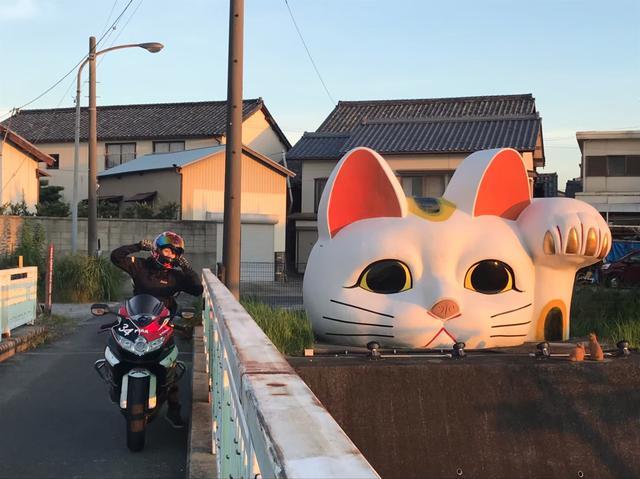 画像2: 最後は【見守り猫 とこにゃん】