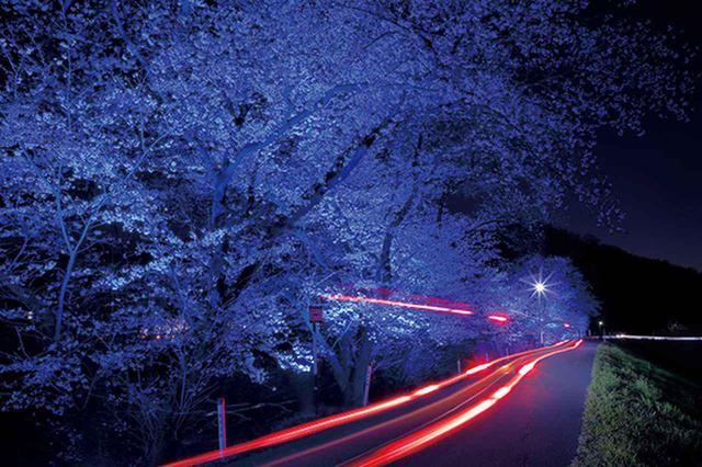 画像1: カメラマン 2020カレンダーシリーズ 13 川北茂貴 「光の跡 Light Trails」
