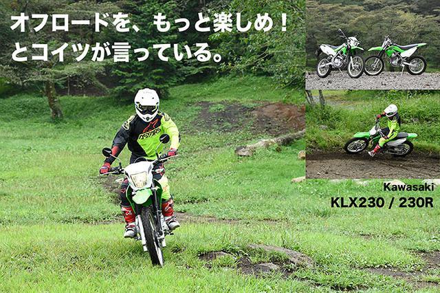 画像: Kawasaki KLX230/LX230R試乗 『オフロードを、もっと楽しめ! とコイツが言っている。』  | WEB Mr.Bike