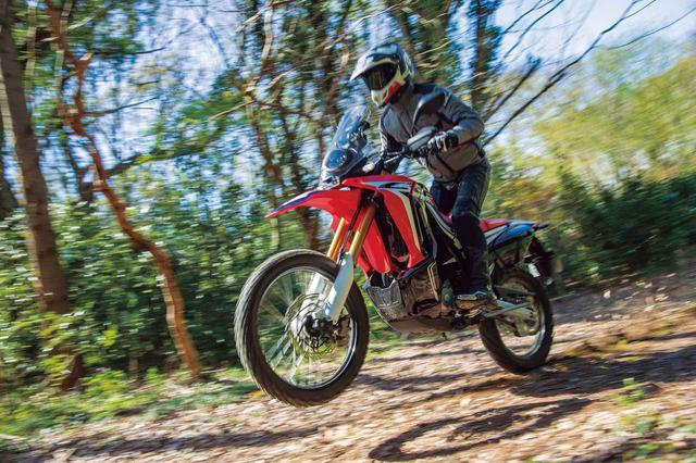 画像1: 【比較インプレ】250ccアドベンチャーを徹底検証〈オフロード編〉ホンダ CRF250 RALLY/ヤマハ TOURING SEROW/スズキ V-Strom250/ABS/カワサキ VERSYS-X250 TOURER - webオートバイ