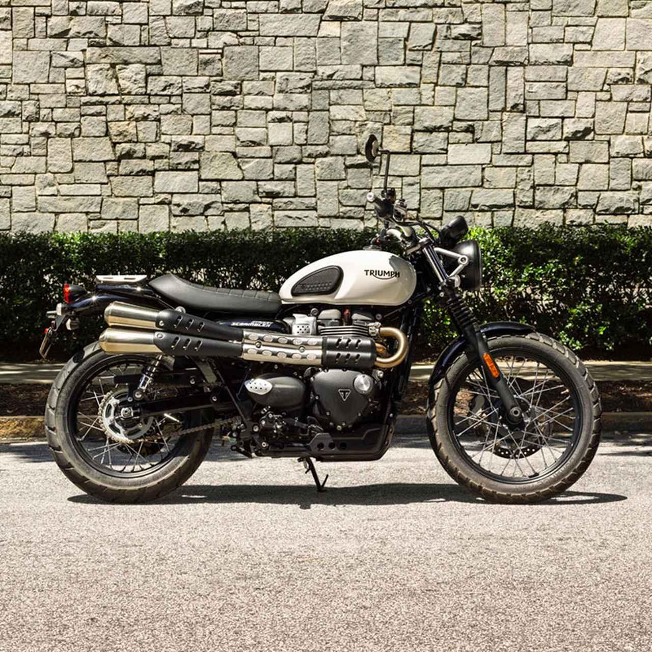 画像1: トライアンフ東京で2019年に売れたバイク 第2位!