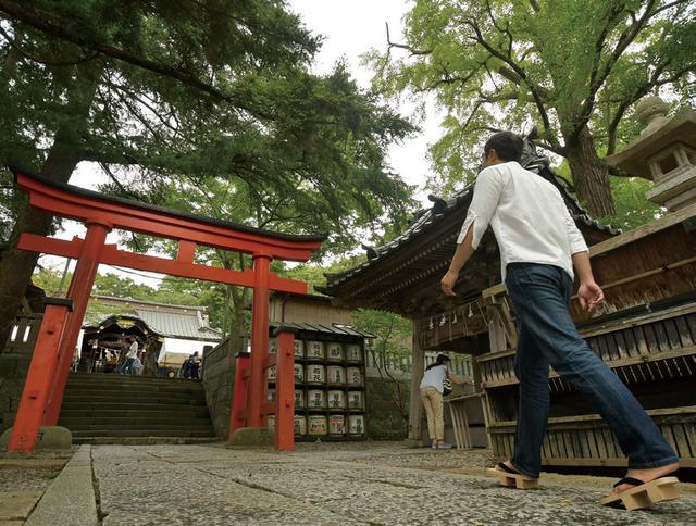 画像: 玉前神社は、周りの土地よりそこだけが一段高くなっています。もしかしたら神社が建つ前の古代から、祭事や祈りの場だったのかもしれません。そんなことを考えながら、社殿へと参道を歩いていきます。