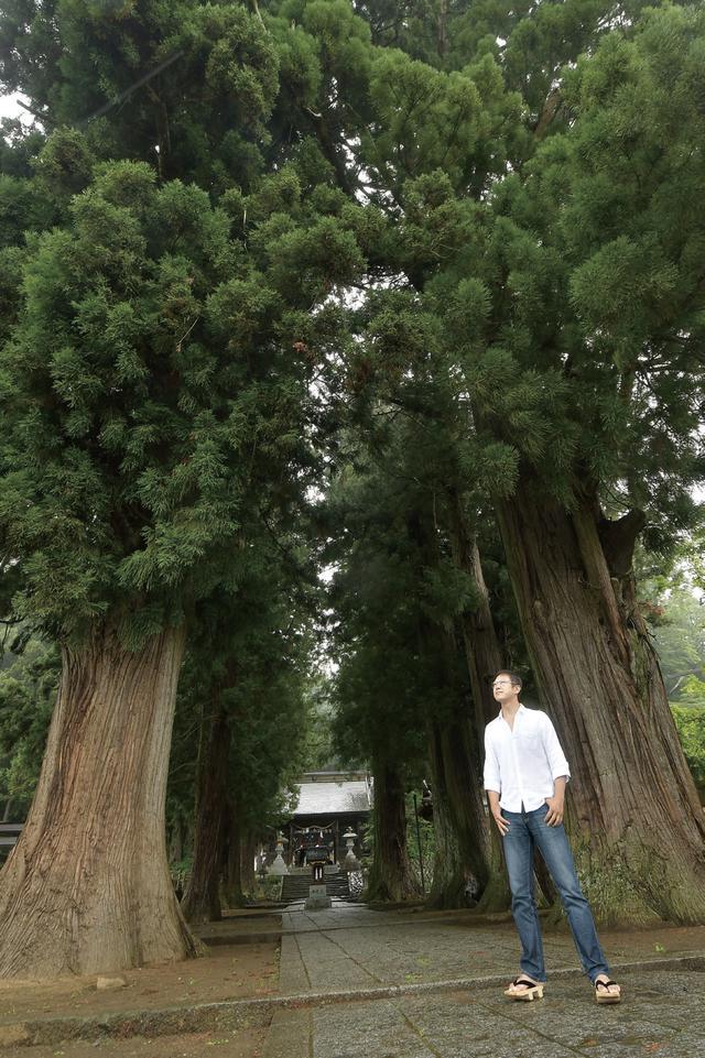 画像: 木って実は、自然では真っ直ぐ伸びないんです。真っ直ぐなうえに高樹齢の木がこんなにも多く生えているってことは、それだけ多くの人の手が掛かっているということ。それも何代にも渡って。先人の想いを感じます。