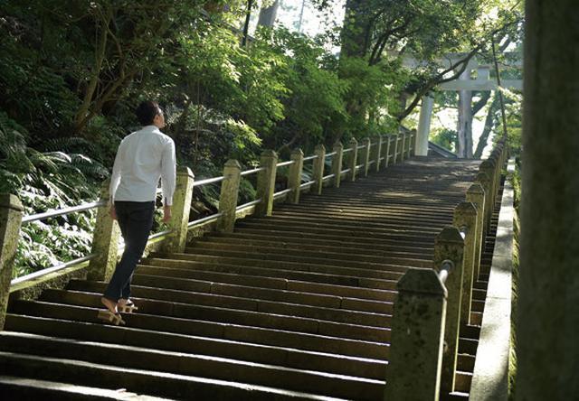 画像: 階段を上っていると、つい下を向いている時間が長くなってしまいます。僕はいつも、できるだけ上を見て歩くようにしています。せっかくの景色ですからね。階段のその先に見えてくる神社。この感じがたまらなくなってきたら、あなたはもう神社通です!
