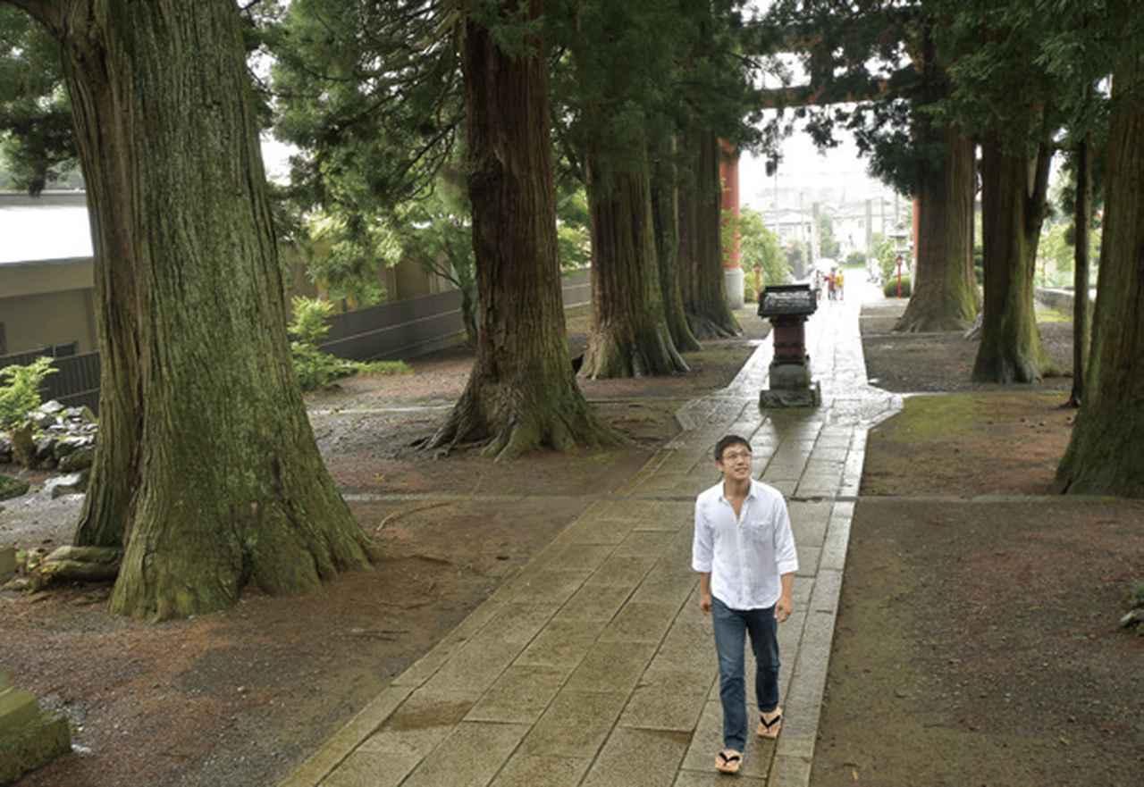 画像: 雨の日の神社もまた、趣があるものです。濡れた参道が、石や木の表情を濃くしてくれるからです。人々は雨を避けますが、動植物たちは雨を喜んでいるように見えました。