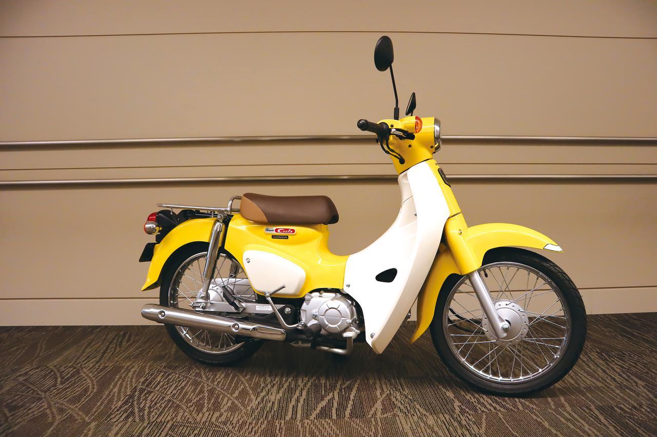 Images : 3番目の画像 - 「【ホンダ2020ニューモデル情報⑥】話題の原付二種「スーパーカブC125」「スーパーカブ110」にも2020年カラーがラインアップ!」のアルバム - LAWRENCE - Motorcycle x Cars + α = Your Life.