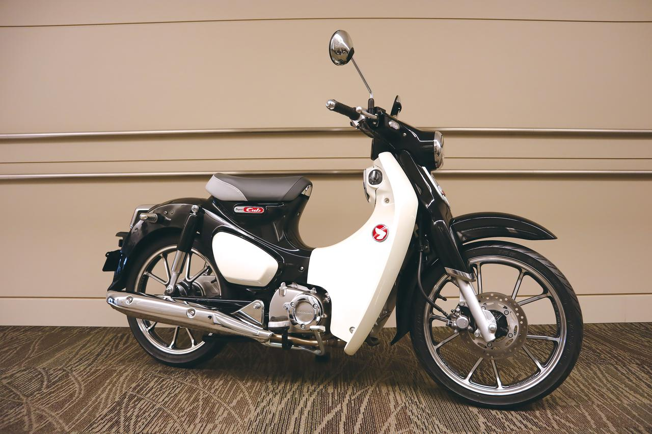 Images : 4番目の画像 - 「【ホンダ2020ニューモデル情報⑥】話題の原付二種「スーパーカブC125」「スーパーカブ110」にも2020年カラーがラインアップ!」のアルバム - LAWRENCE - Motorcycle x Cars + α = Your Life.
