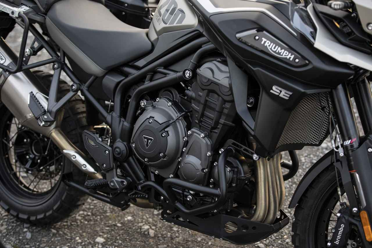 Images : 8番目の画像 - 「Tiger 1200 Desert Special Edition」の写真をもっと見る - webオートバイ