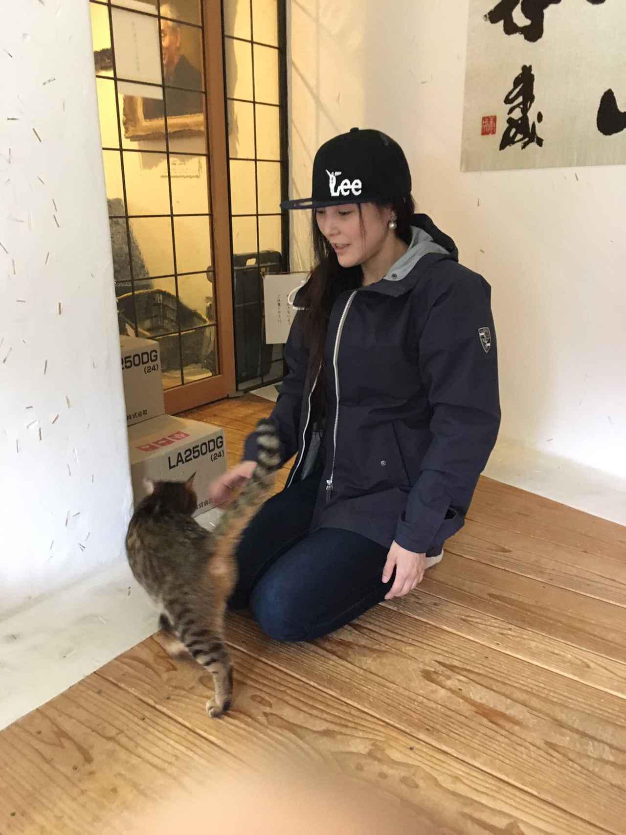 画像14: 福山理子の大分ツーリング〈番外編2〉長湯温泉「ラムネ温泉館」と猫ちゃんが案内してくれる美術館が最高!