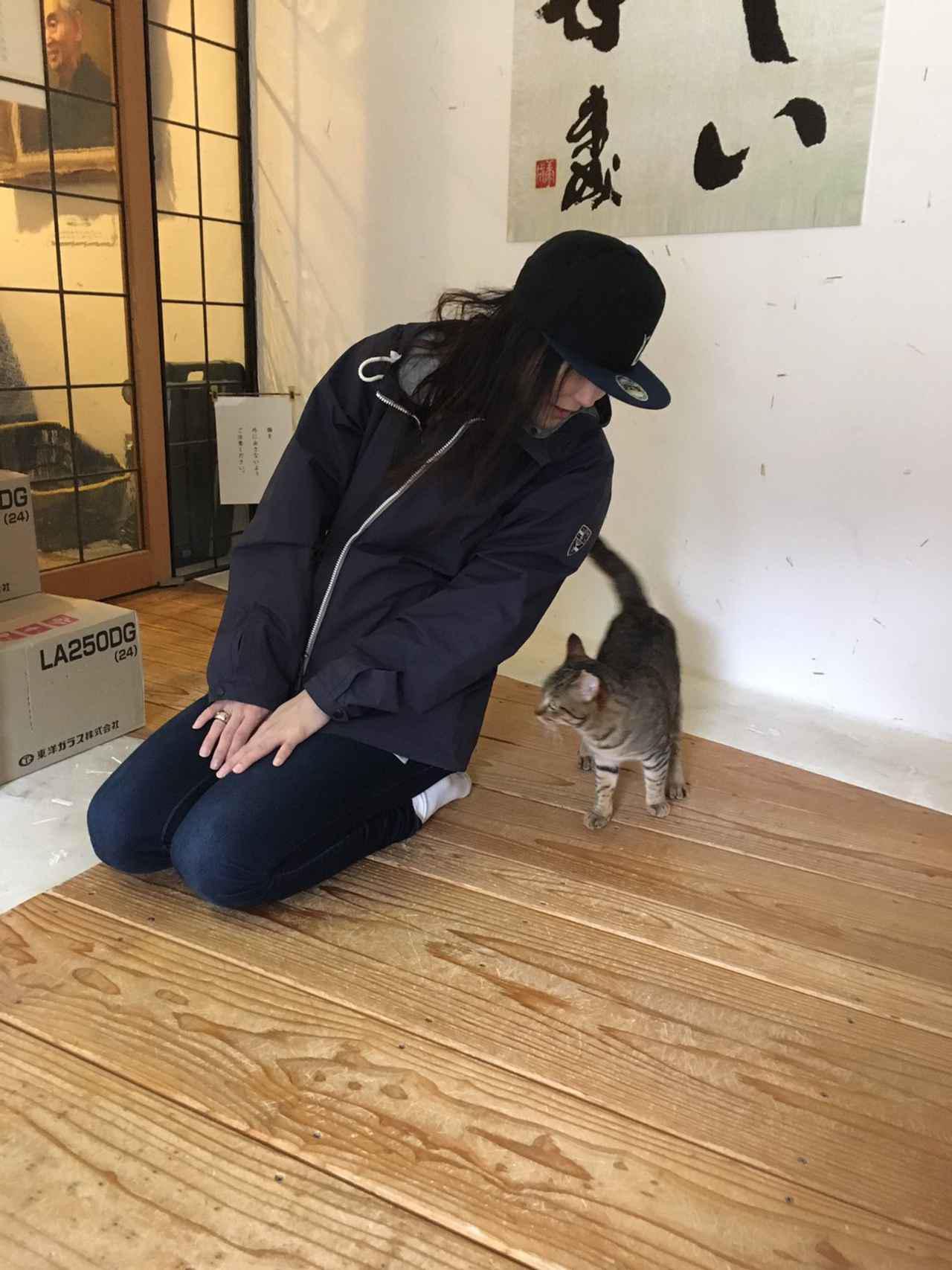 画像13: 福山理子の大分ツーリング〈番外編2〉長湯温泉「ラムネ温泉館」と猫ちゃんが案内してくれる美術館が最高!