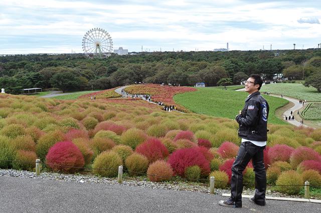 画像: ひたち海浜公園 茨城県ひたちなか市馬渡字大沼605-4