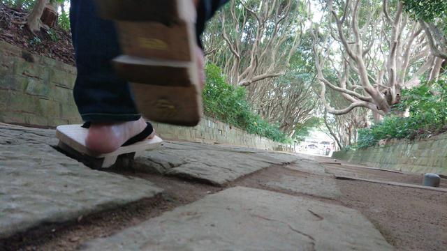 画像: 長い参道の両脇には、樹齢300年を超える木々がトンネル状になっていて、はるか向こうに社殿が見えます。歩いていても、聞こえてくるのは自然の音だけ。掃き清められた地面から、この神社を大切に守っている地域の人や神職たちの想いが伝わってきます。