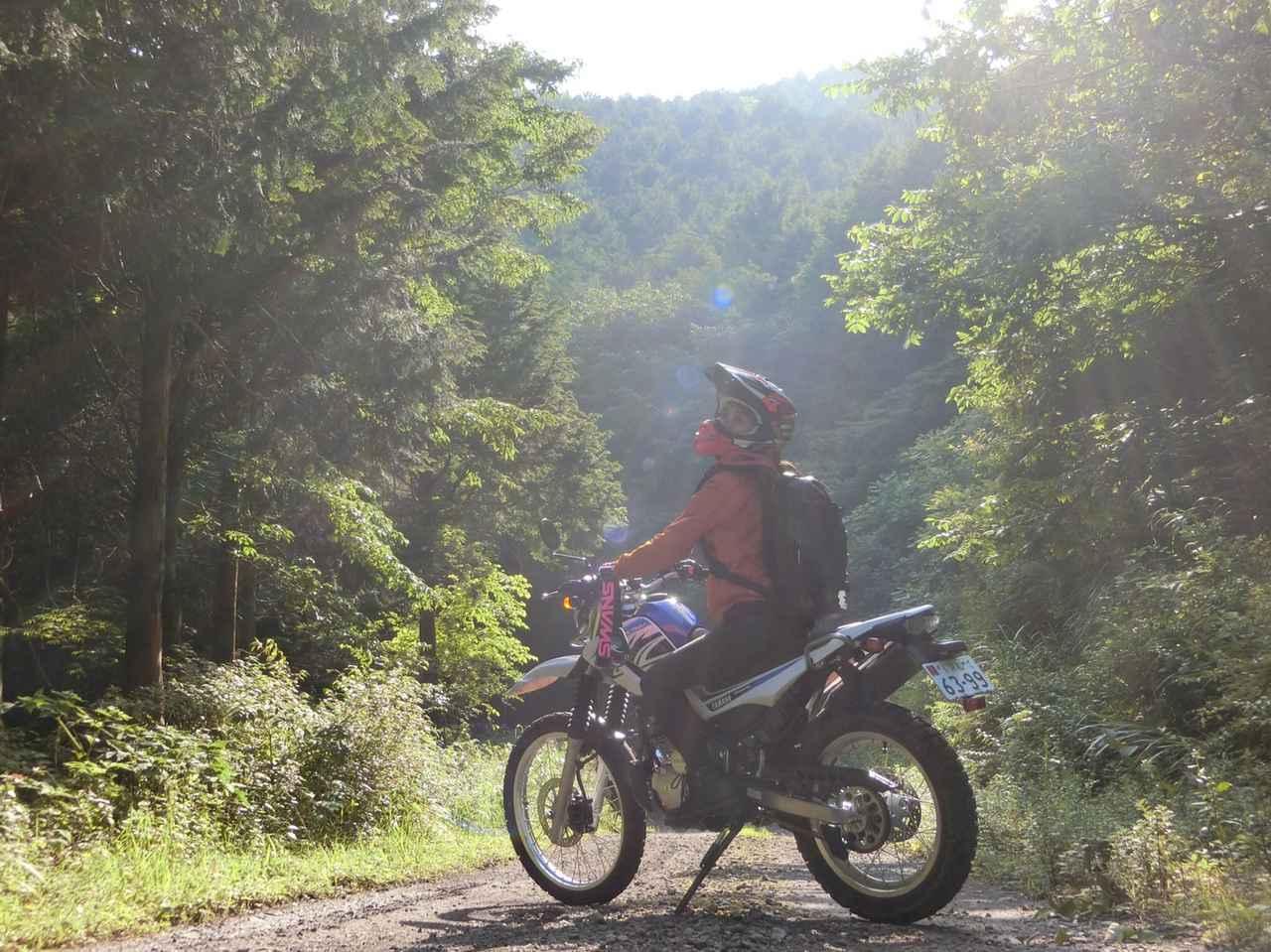 画像: インプレ用にお借りしたセローで初めての林道へ。バイクっていろんな世界があるから面白い!