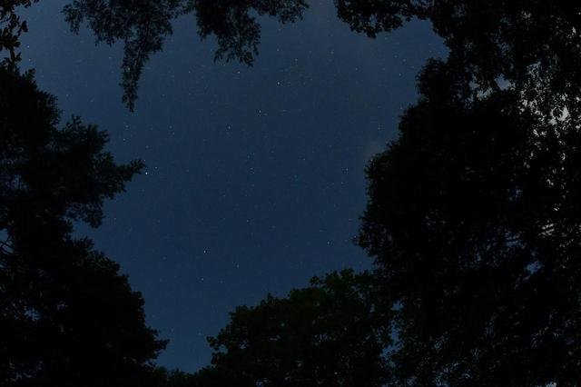 画像: 天の川はよくわからなかったけど、星はきれいでした。