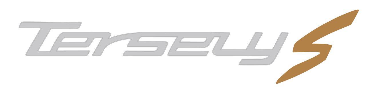 画像: このスクーターの日本でのネーミングは「Tersely(ターセリー) S」。本国ではPeople Sという名前で発売されています。