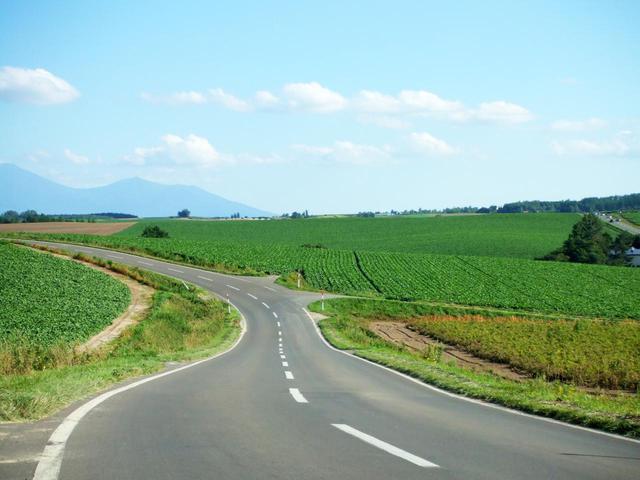 画像2: ① 北海道「美瑛の丘風景」
