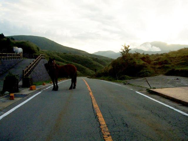 画像2: 新型コロナが終息したら、絶対に行きたい「日本の絶景 バイクツーリング・スポット」10選!