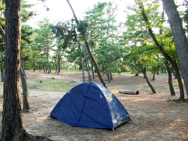 画像: 鳥取砂丘のそばにある無料のキャンプサイト「柳茶屋キャンプ場」。