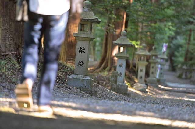 画像: 全国の神社を巡っていると、まるでお寺のような神社に出会えることがあります。歴史もあり、広大な境内を有しているのに、無人で参拝者もほとんどいない。 大勢の人で賑わう有名神社にスポットが当たりがちですが、まだまだ全国には、ここのように知っていただきたい神社が多くあります。