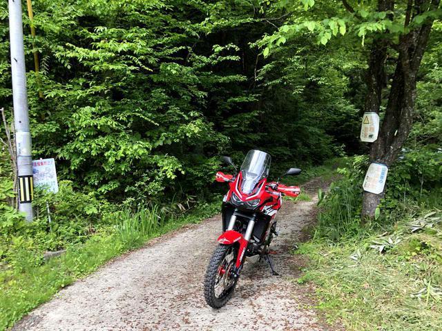 画像: 久々の林道探索。ノドは渇いたが大満足!