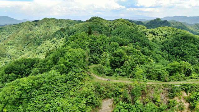 画像: 気持ちのいい尾根道。オフロードバイクだから楽しめる景色。
