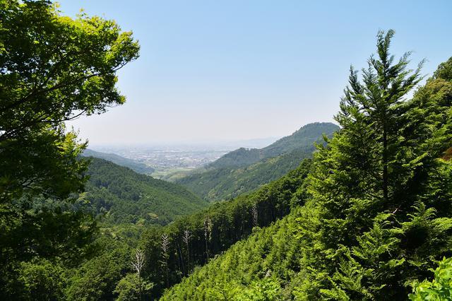 画像2: 山