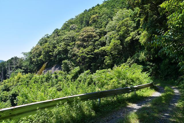 画像3: 山