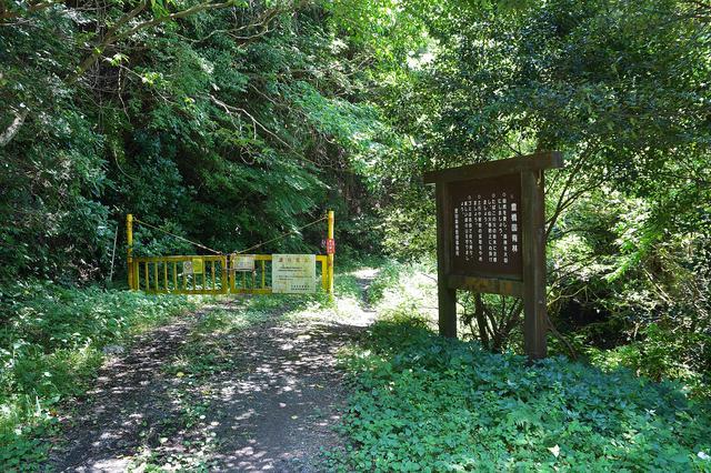 画像4: いざゆかん林道へ