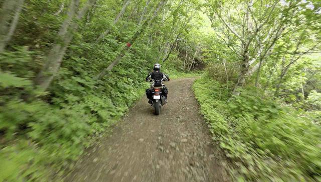 画像: 初探索! いざ礼文林道へ
