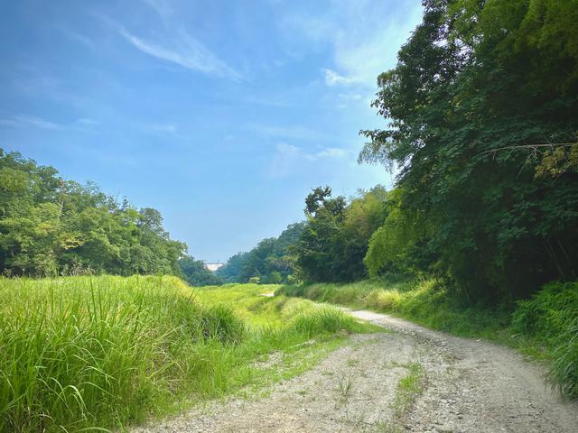 画像11: PHOTO/pi3rr3eさん twitter.com